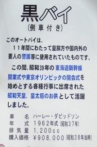 P1080450-2.JPG